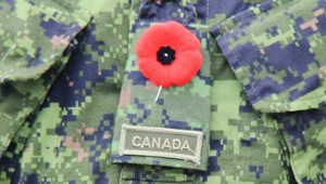 Show 37: Sunday Gun Hunting, Remembrance Day, OOD, Deer Eyesight